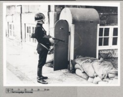 Amalienborgslaget: Dansk politi på vagt, 1944