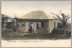 Folkeliv på St. Thomas