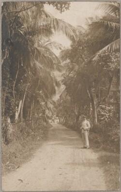 Postkort fra St. Thomas