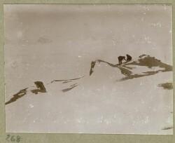 Danmarkekspeditionen til nordøst Grønland 1906-1908