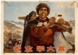 农业学大寨Landbruget studerer Dazhai
