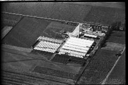 thumbnail: Skråfoto fra 1936-1938 taget 102 meter fra Hf. Svarø 90