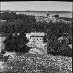 thumbnail: Skråfoto fra 1958 taget 1134 meter fra Eskemosevej 16